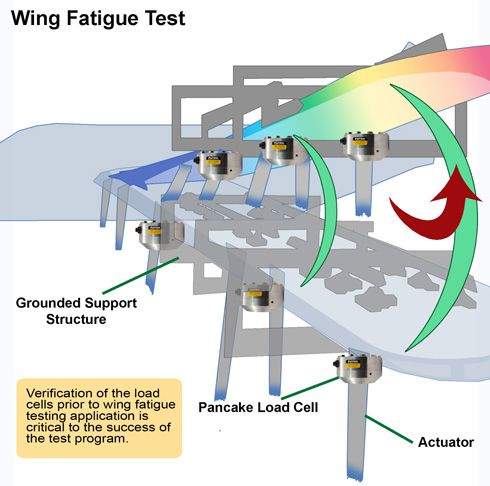 wingfatigue